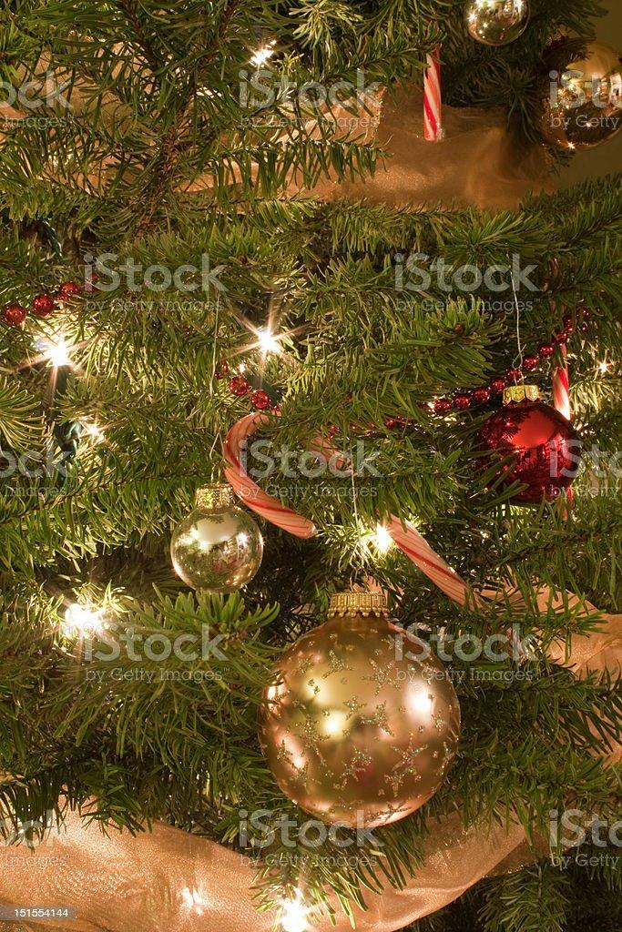 Christmas Tree Vignette royalty-free stock photo
