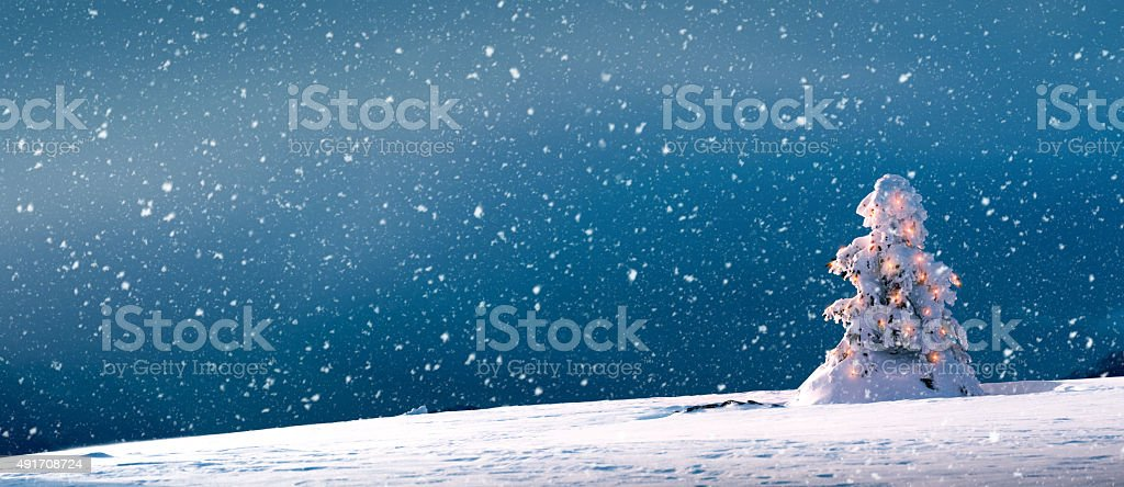 Christmas Tree With Lights And Snow - Panoramic stock photo