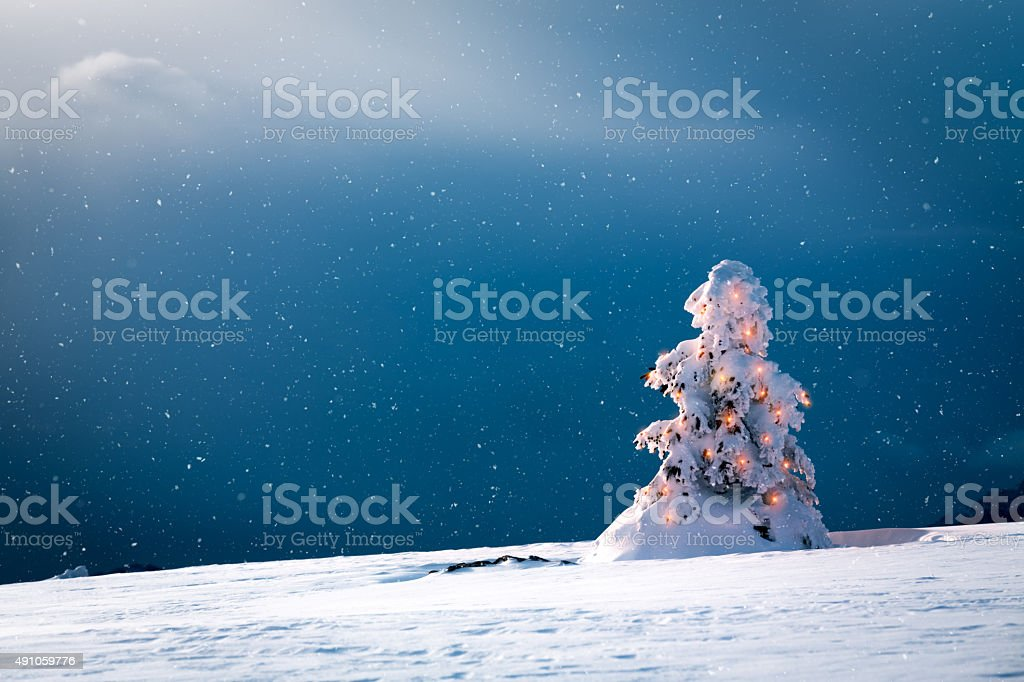 Christmas Tree With Lights And Snow stock photo