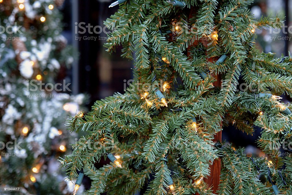 Christmas tree with lights royalty-free stock photo