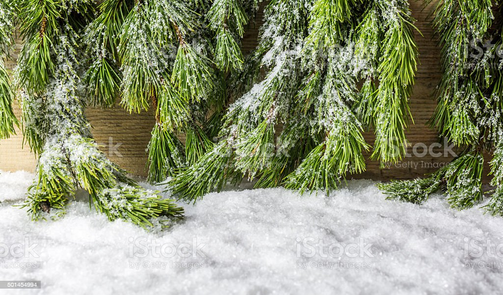 Christmas Tree with Snow, Winter Background stock photo
