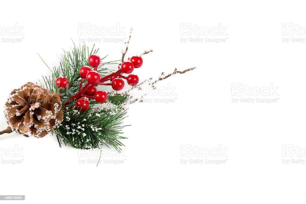 Christmas twig and berries on a white background stock photo