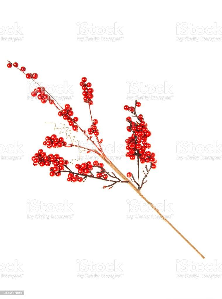 Christmas twig stock photo
