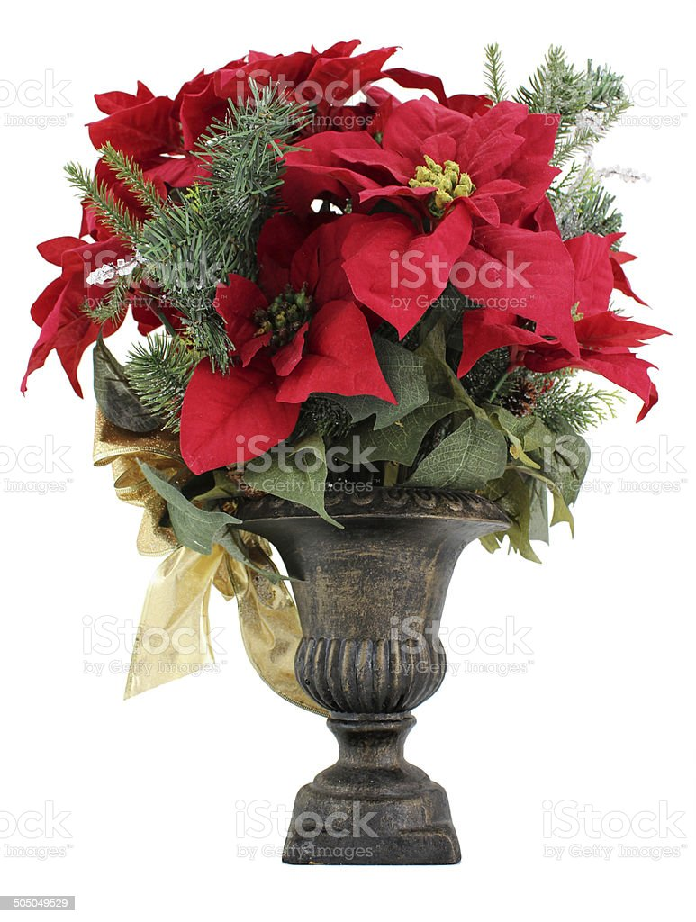 Christmas Urn with Red Poinsettia Flowers Decoration stock photo