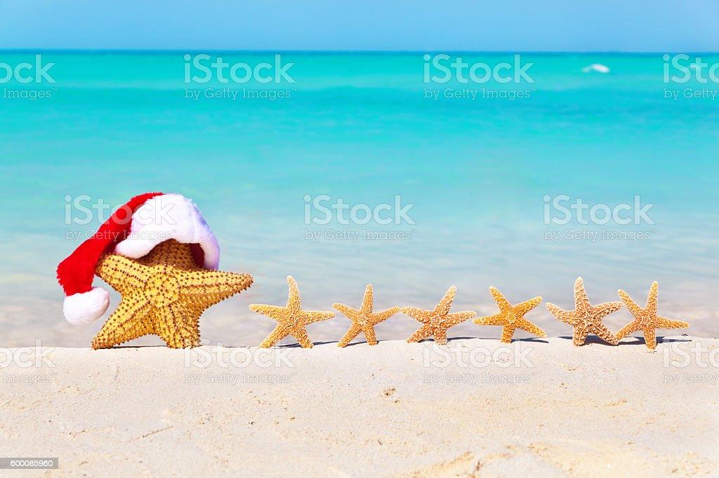Christmas Vacation Starfish Family on the Carribean Beach stock photo