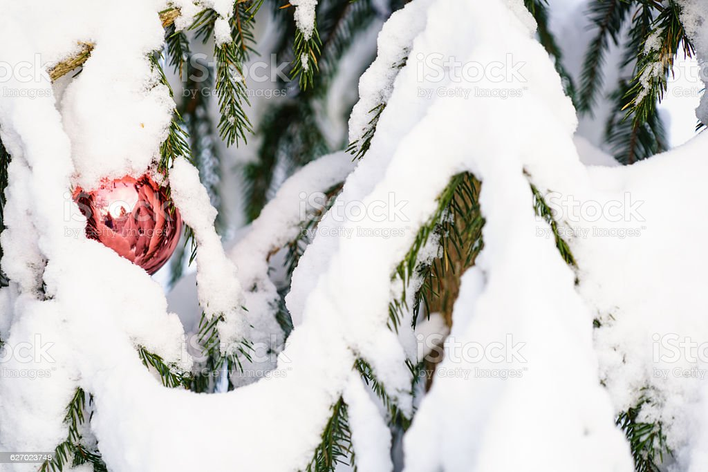 Christmast balls on Christmas tree in Nature covered with snow stock photo