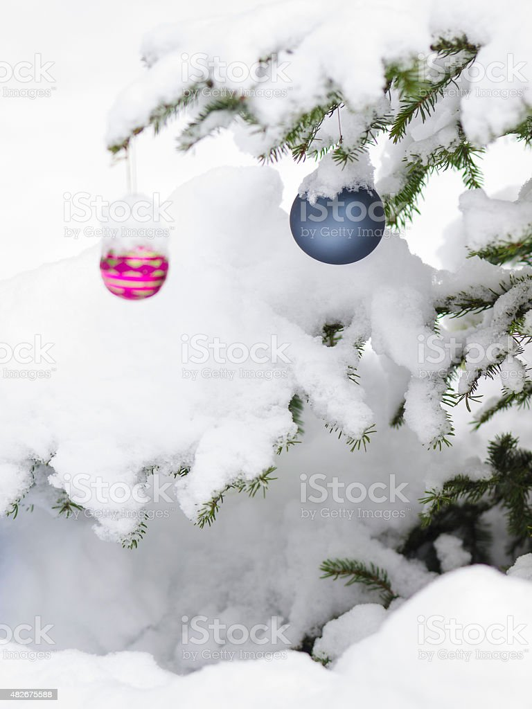 Christmast balls with snow in forest for card stock photo