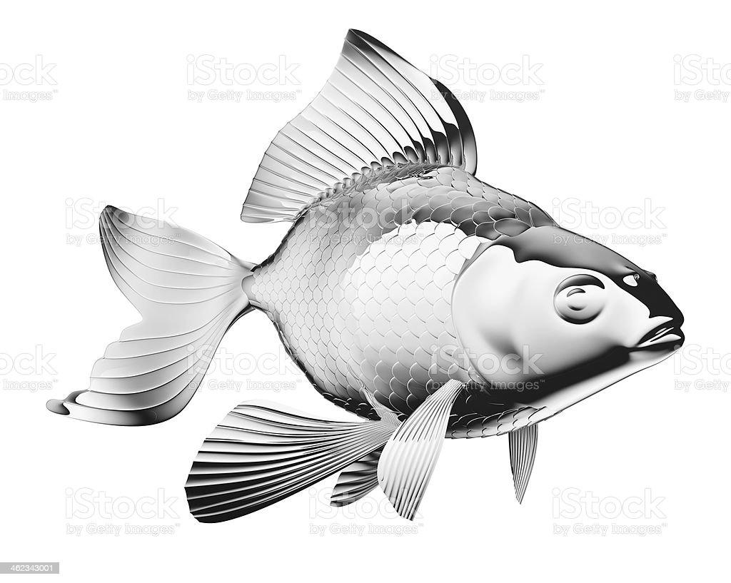 chromium-plated goldfish isolated royalty-free stock photo