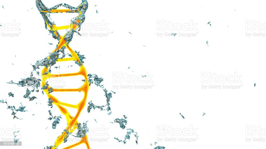 Chromosome . 3D render isolated stock photo