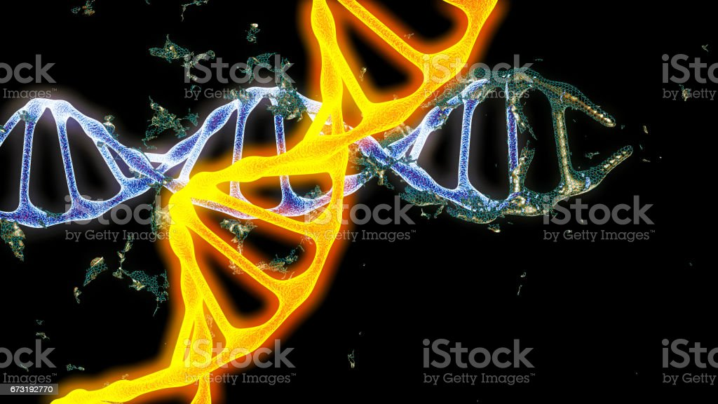Chromosome . 3D render stock photo