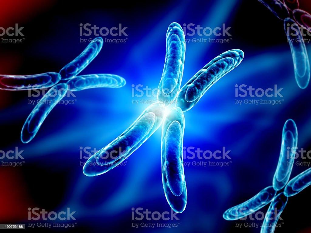 X chromosome on blue background stock photo