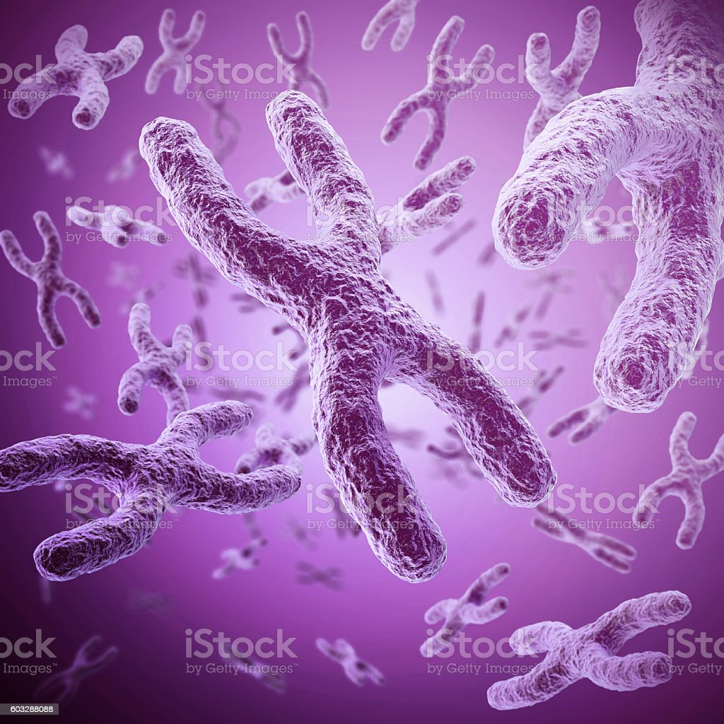 X Chromosome scientific concept, medical symbol for gene therapy with stock photo