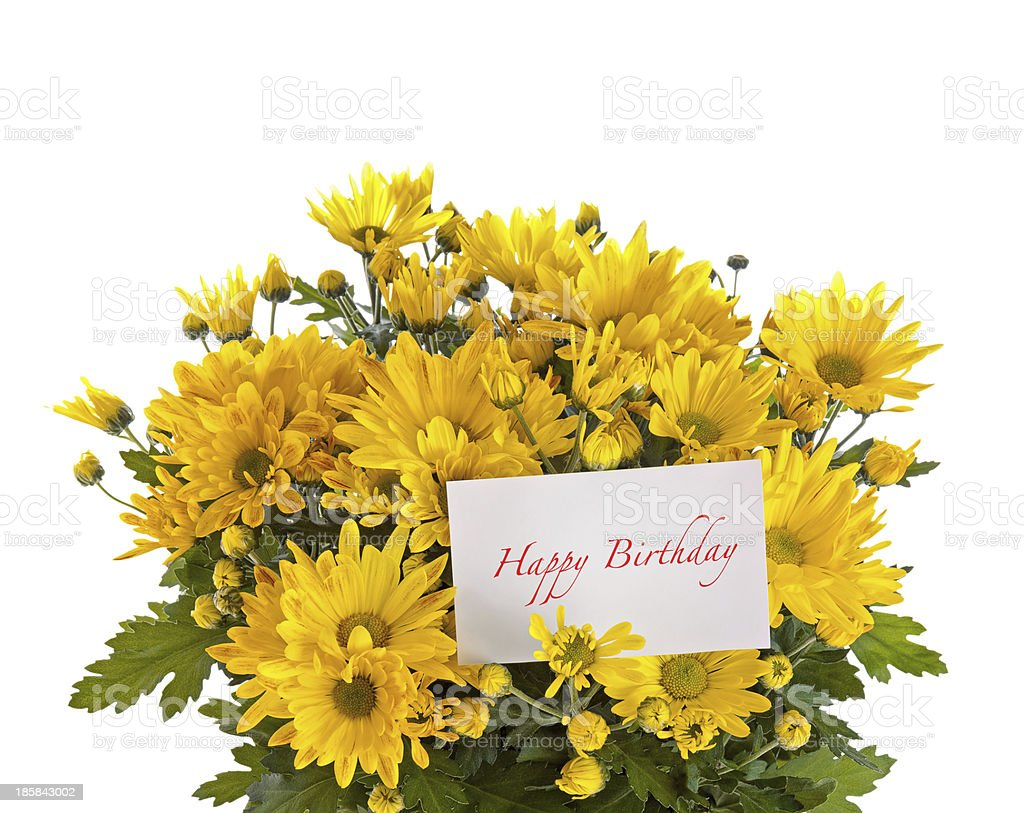 Chrysanthemum flowers bouquet royalty-free stock photo