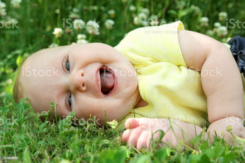 Chubby Laughing Baby Girl Laying Outside in Flower Meadow stock photo
