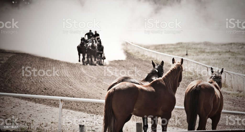 Chuckwagon race. royalty-free stock photo
