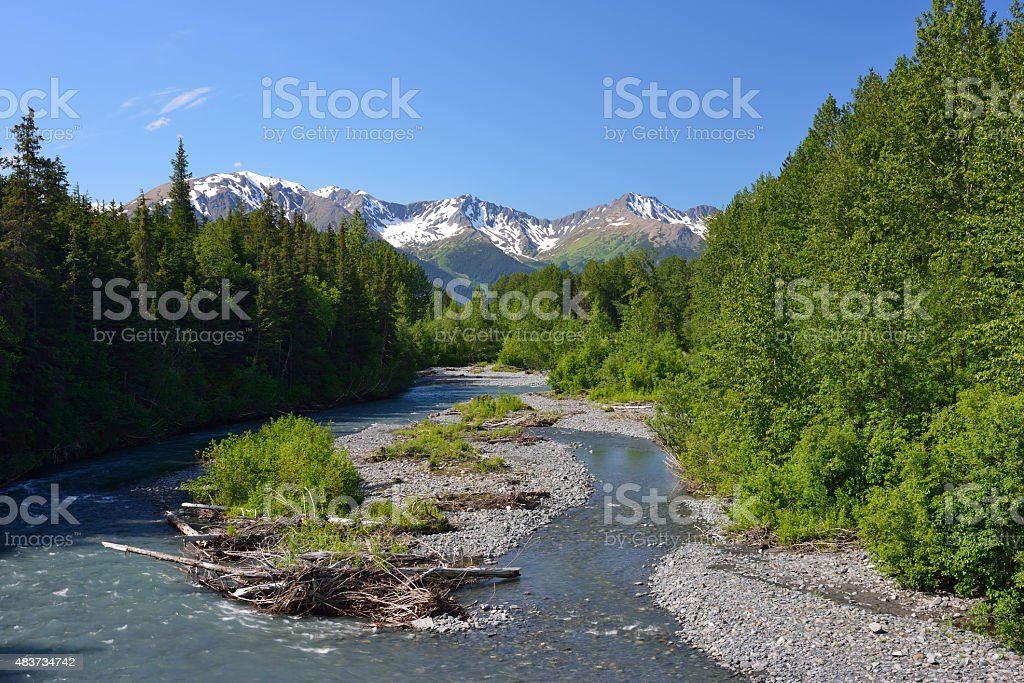 Chugach State Park in Summer stock photo
