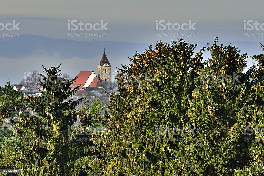Church and Clocktower with Fir Trees stock photo