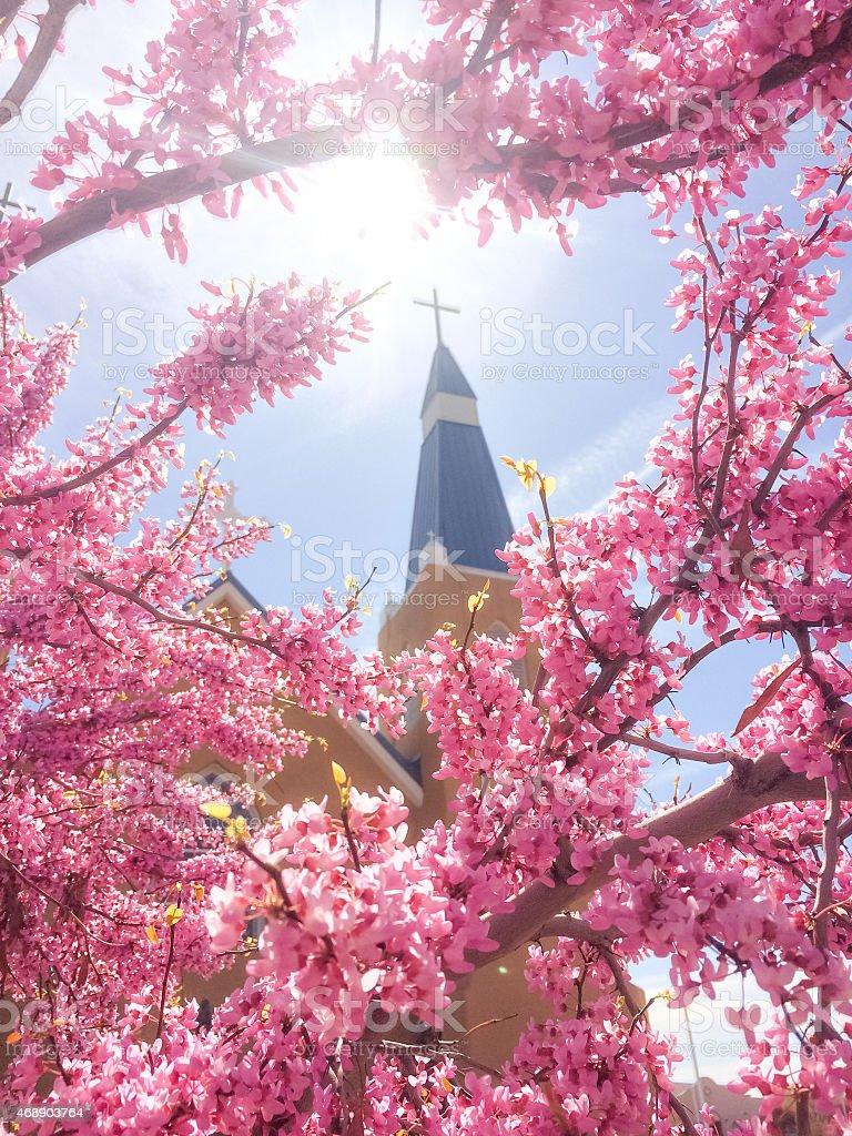 church and sunshine stock photo