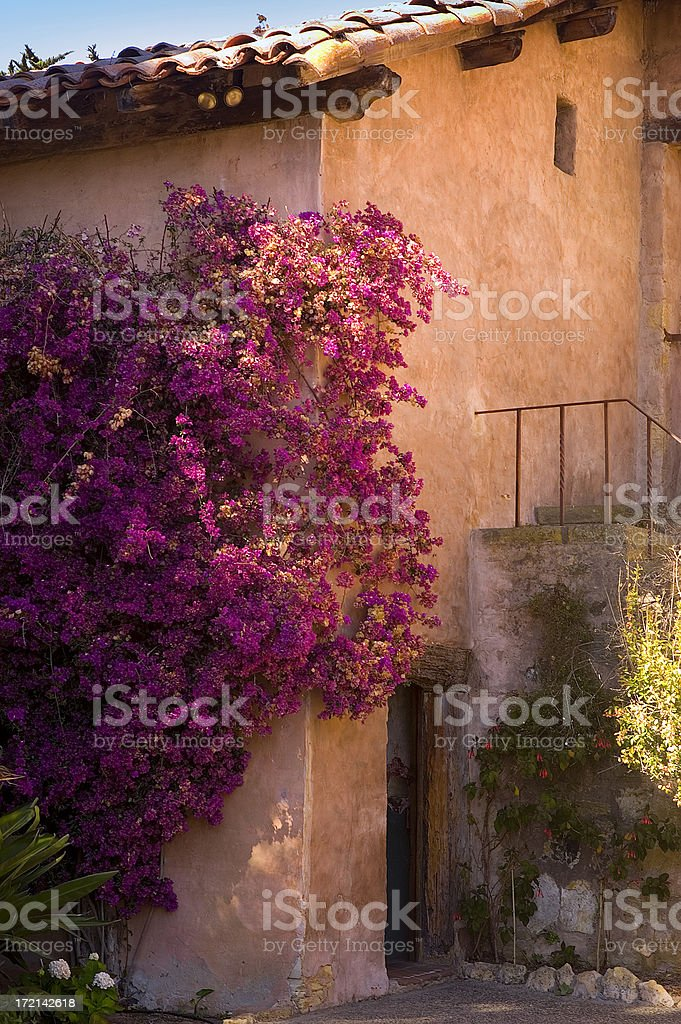 Church Garden stock photo