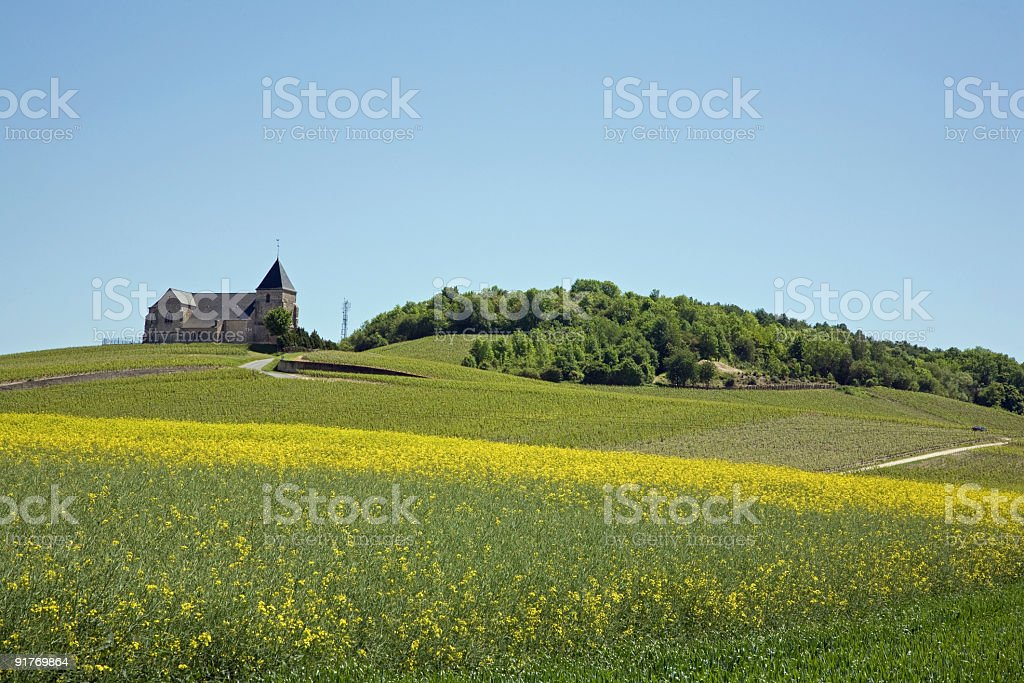 Church in Chavot-Concourt, the french champaign region royalty-free stock photo