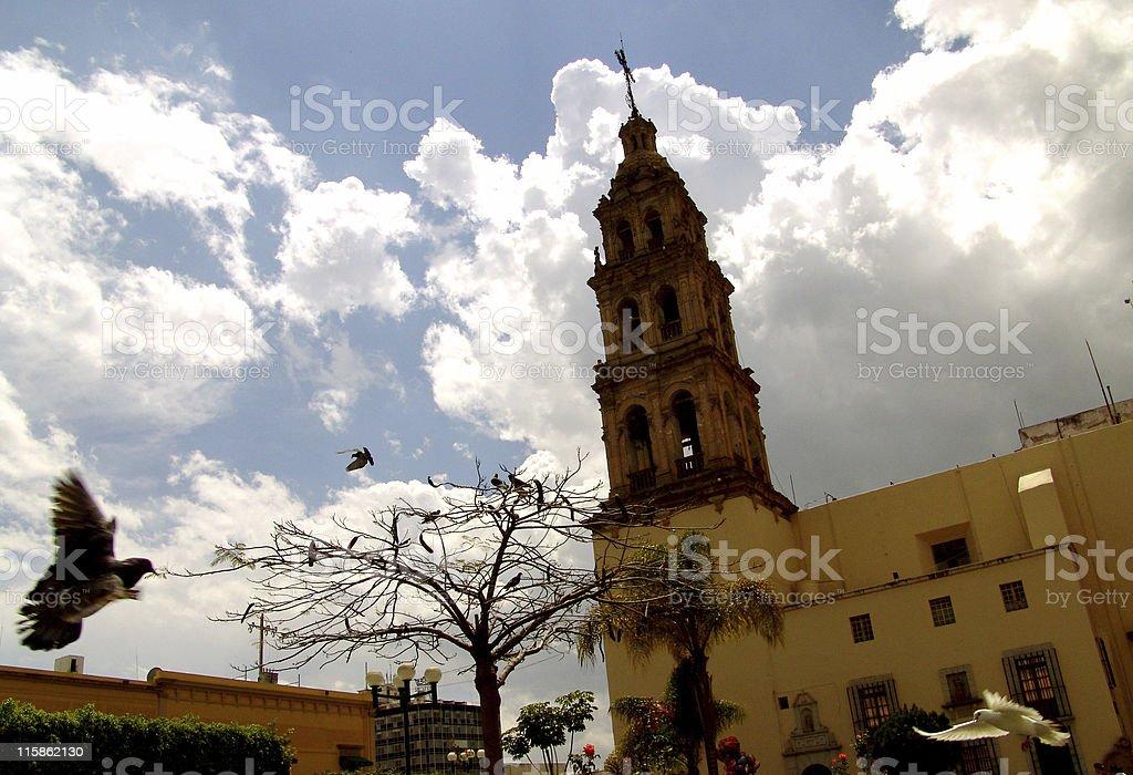 Church Leon Plaza pigeon stock photo