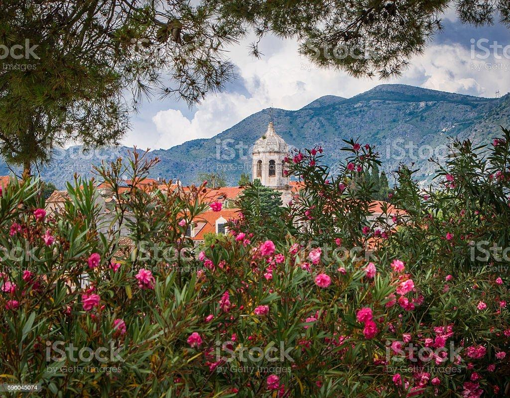 Church of St. Nicholas, Cavtat stock photo
