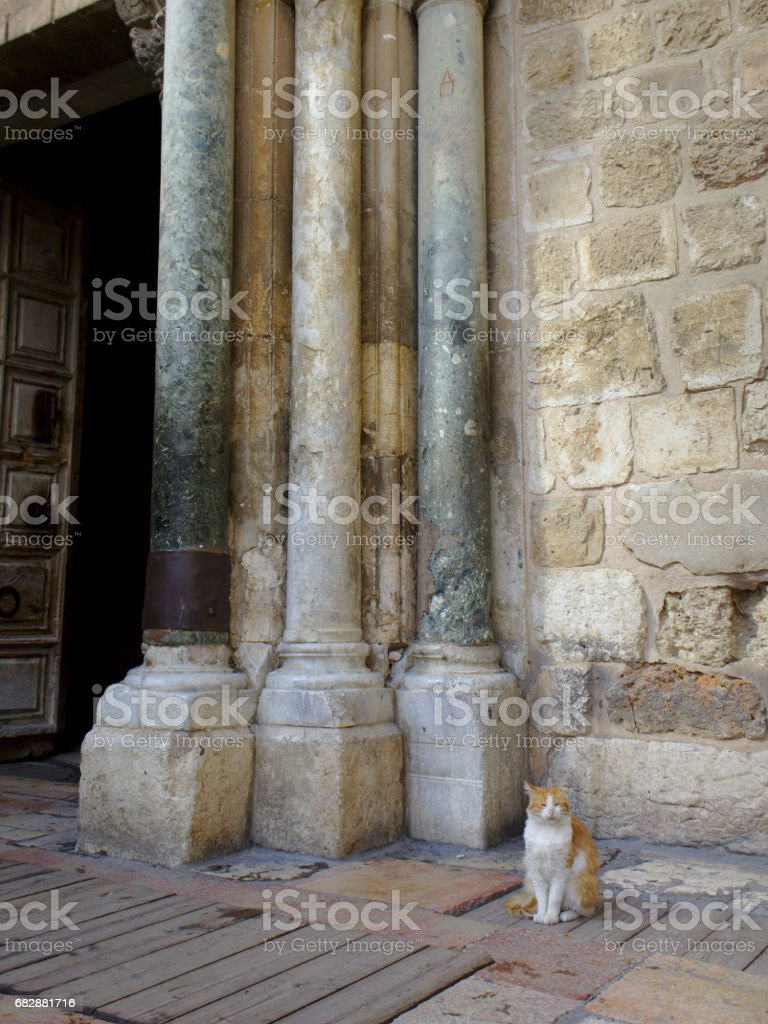 Church of the Holy sepulchre main entrance with cat stock photo