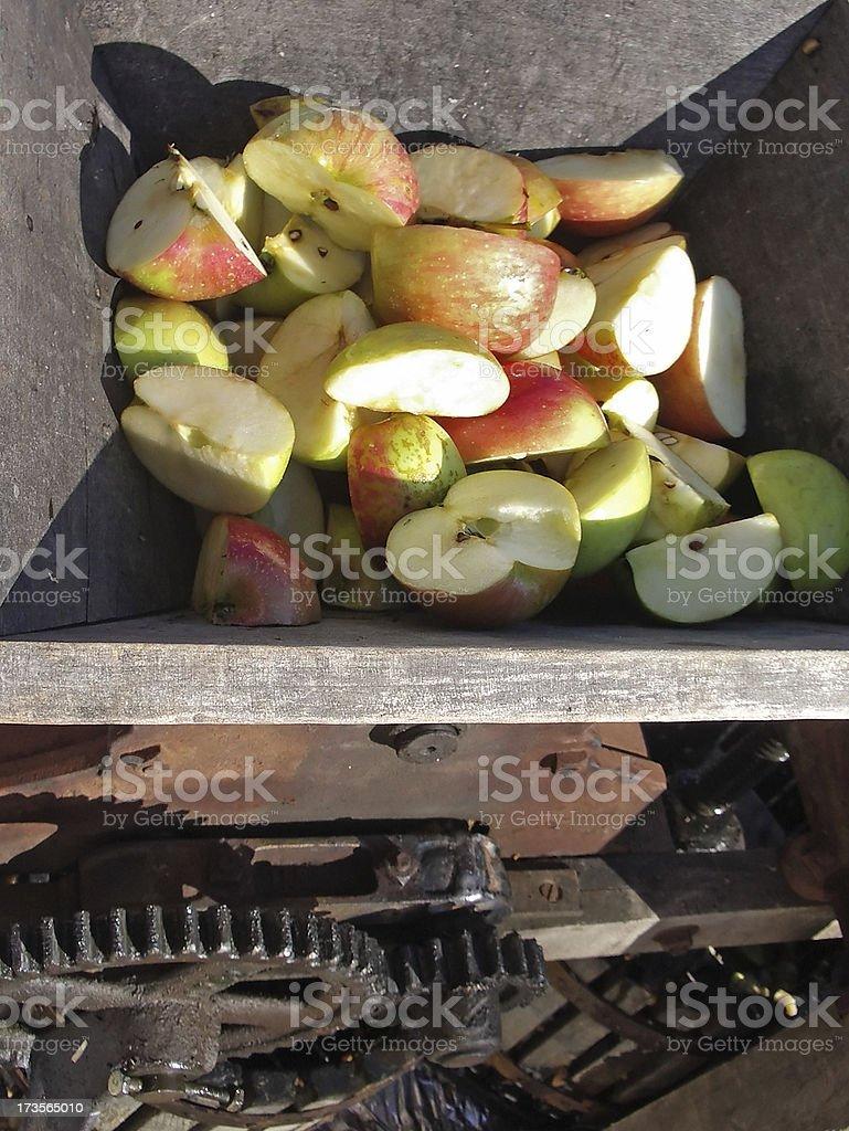 Cider Apples stock photo