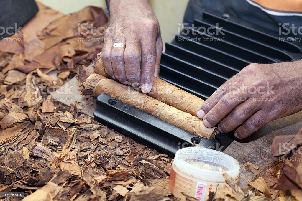 Cigar making royalty-free stock photo