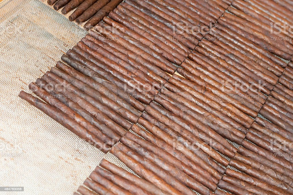 Cigar production stock photo