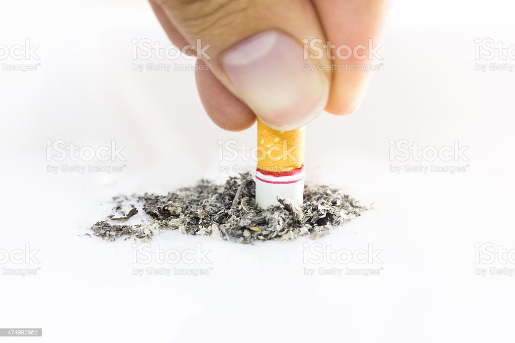 Cigarette butt isolated on white background. stock photo