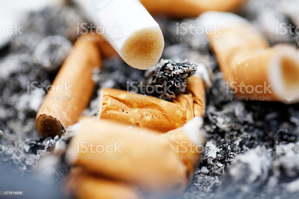Cigarette Butts Macro stock photo
