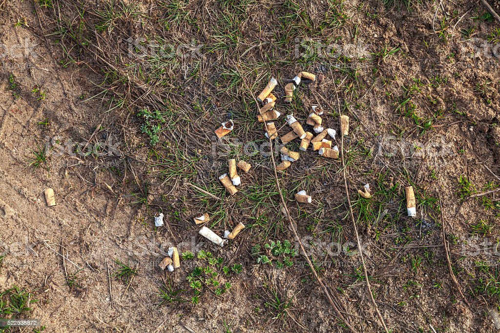 Cigarette ends on the grass stock photo