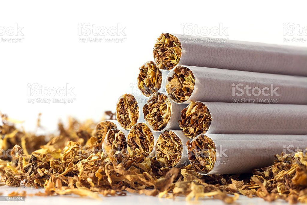 cigarettes in loose tobacco, close up against white stock photo