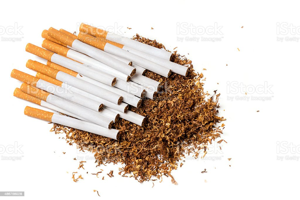 cigarettes on loose tobacco, view from above, isolated on white stock photo