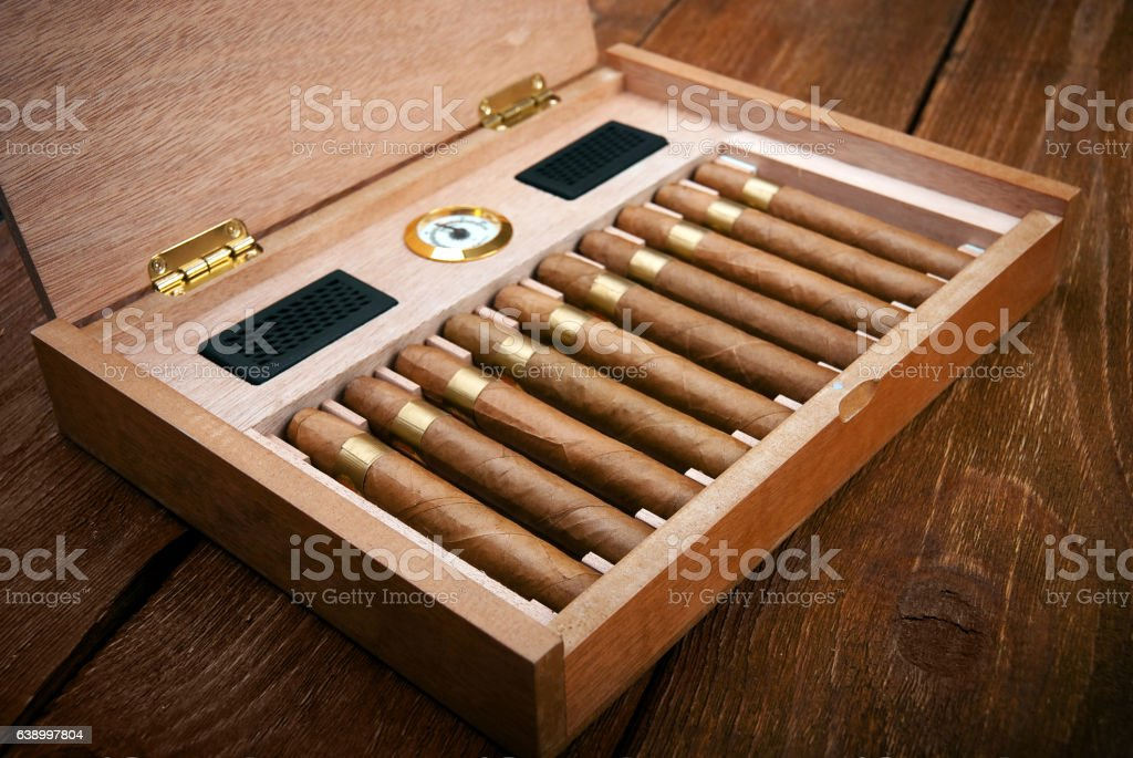cigars in the humidor stock photo