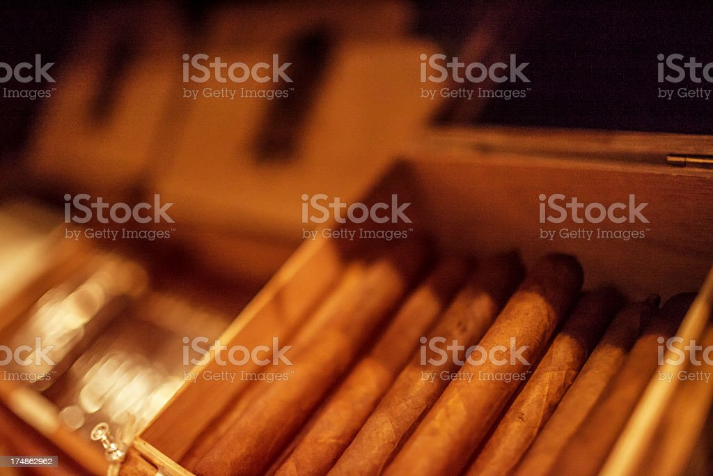 Cigars royalty-free stock photo