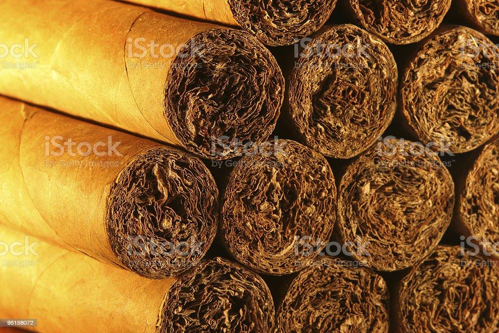 Habanos. foto de stock libre de derechos
