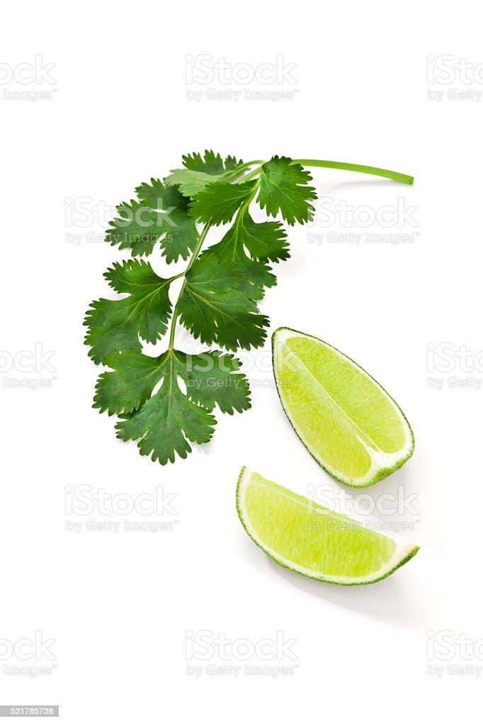 Cilantro and lime stock photo