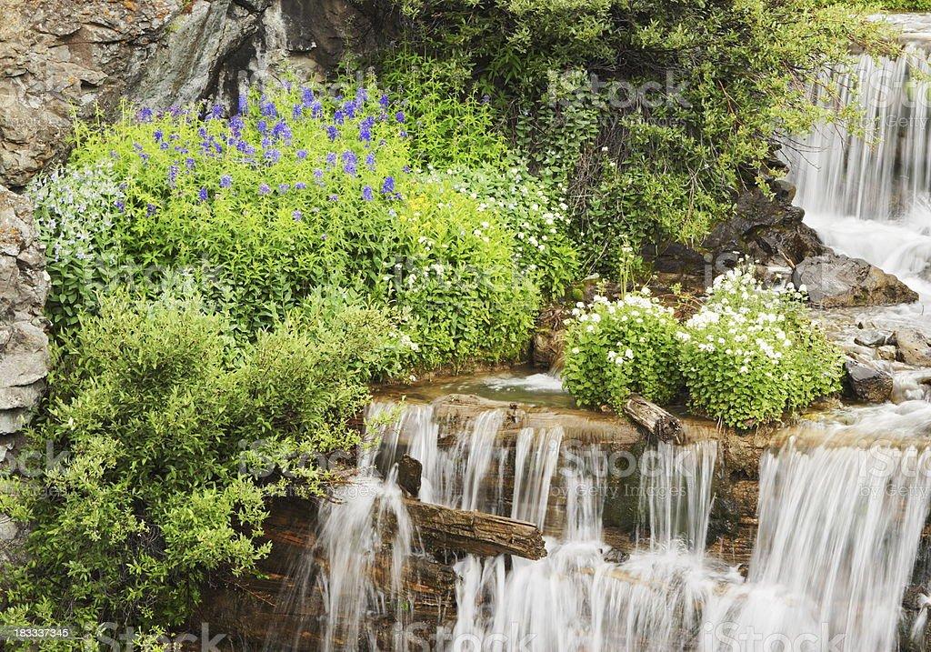 Cimarron Falls Rocky Mountain Waterfall royalty-free stock photo