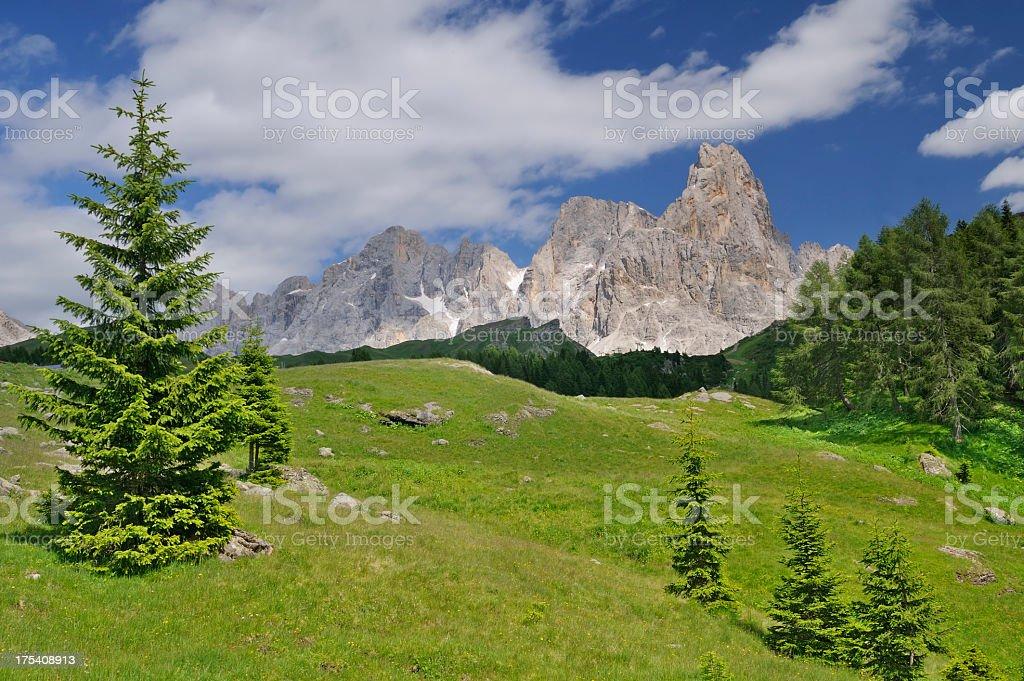 Cimon Della Pala (Dolomites - Italy) stock photo