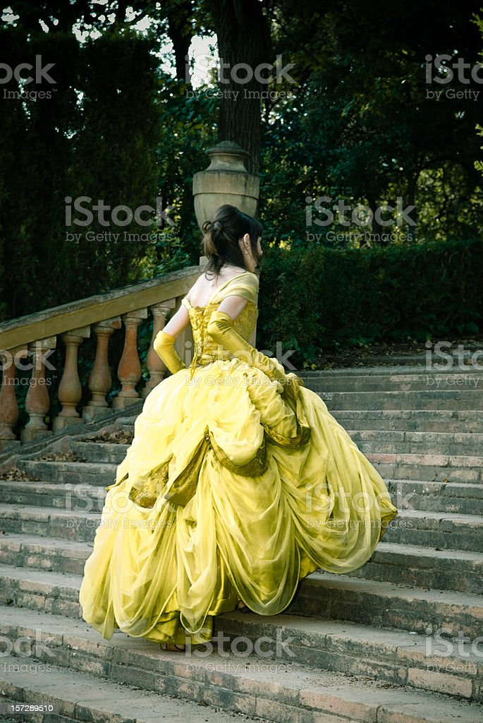 Cinderella on the Stairs III stock photo