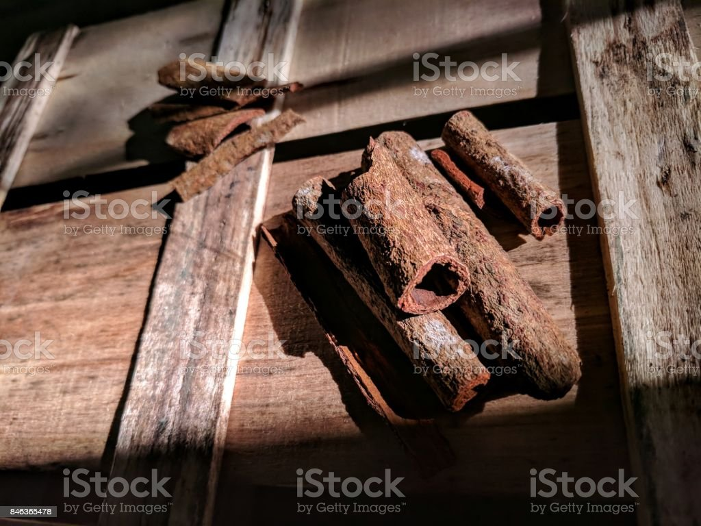 cinnamon and bay leaf stock photo