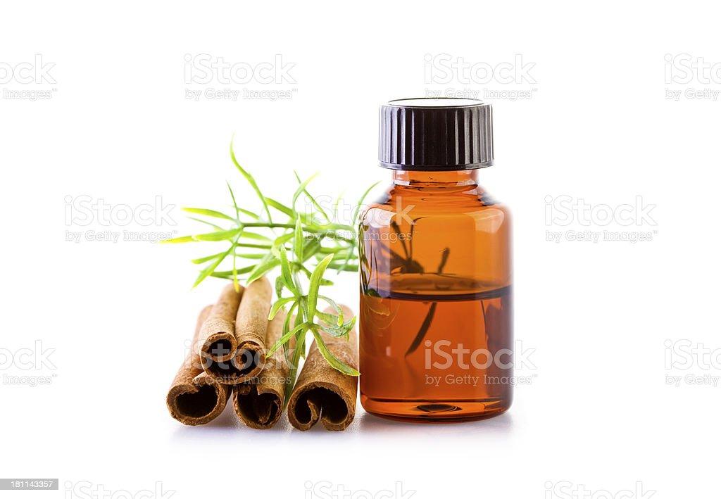 Cinnamon essential oil royalty-free stock photo