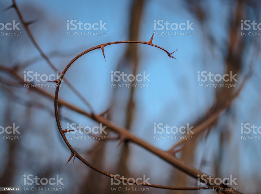 Cipher stock photo