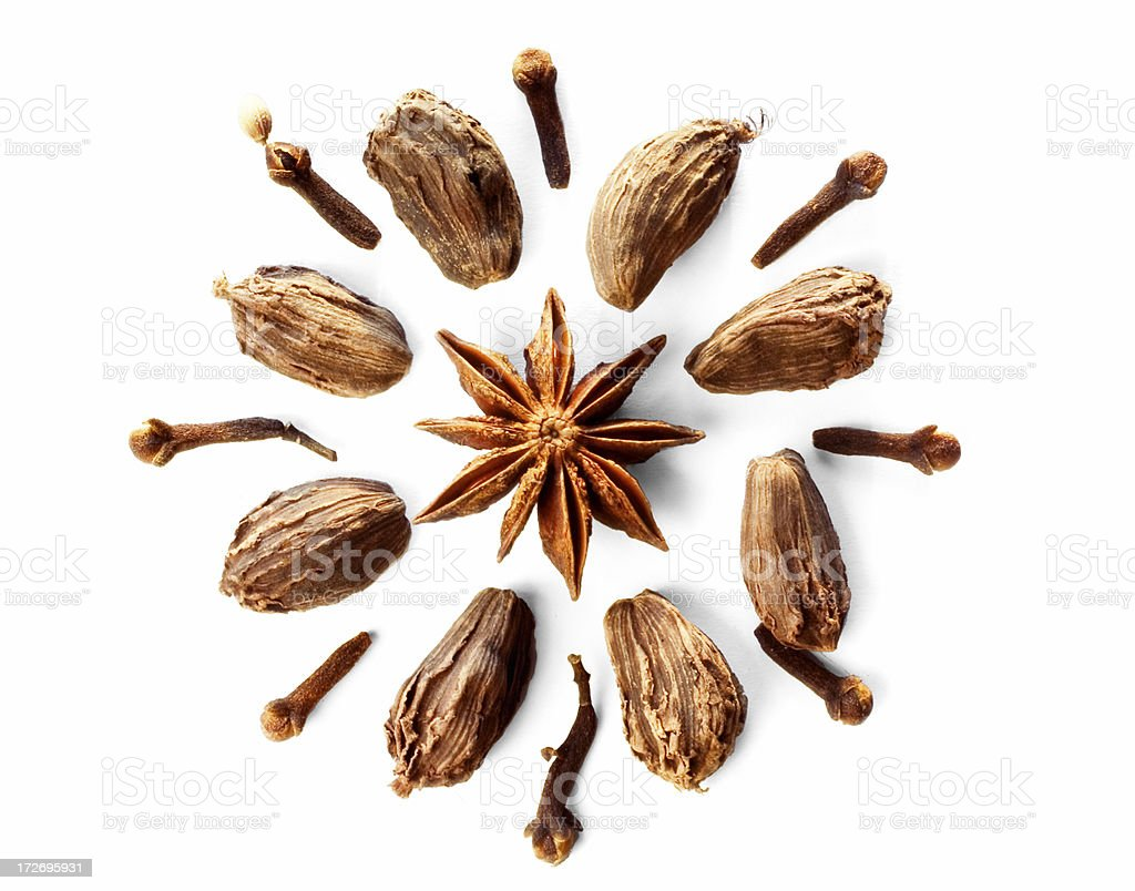 Circle of Spices royalty-free stock photo