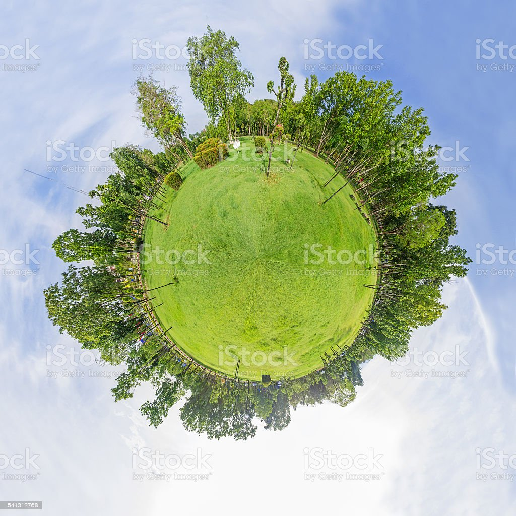 Circle panorama of forest stock photo