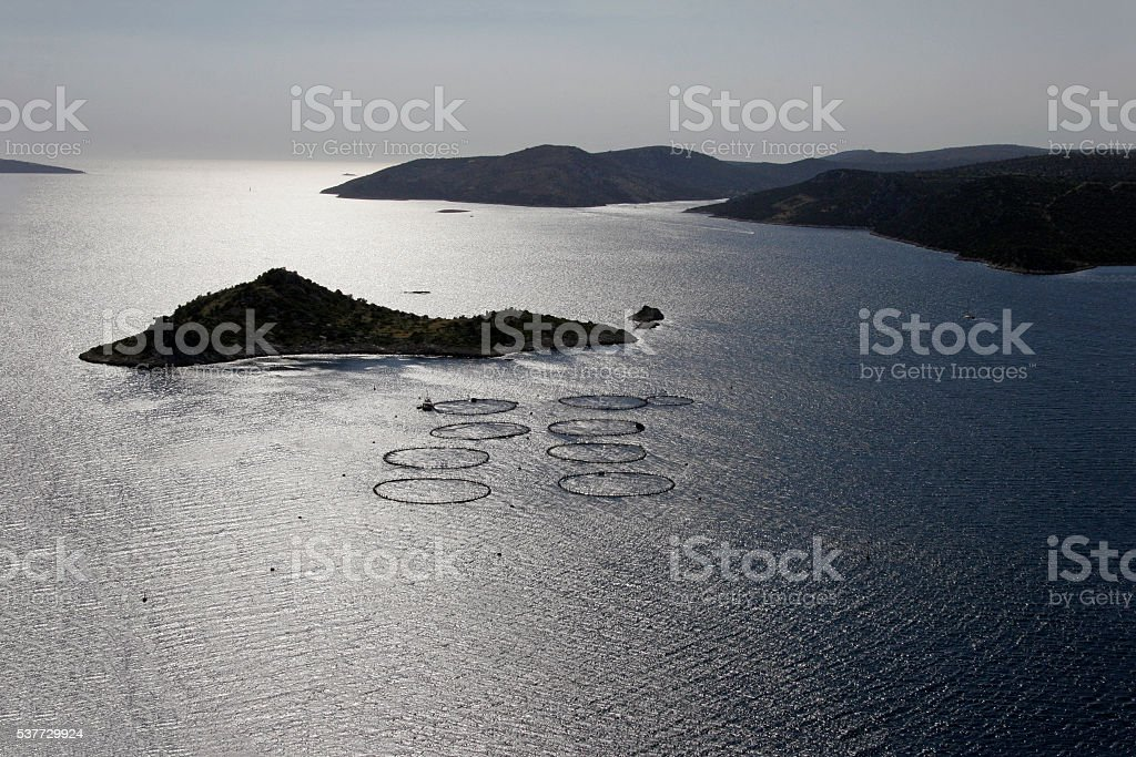 Circles on the sea surface stock photo