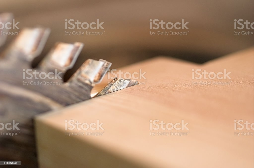 Sega circolare mangiare il legno foto stock royalty-free