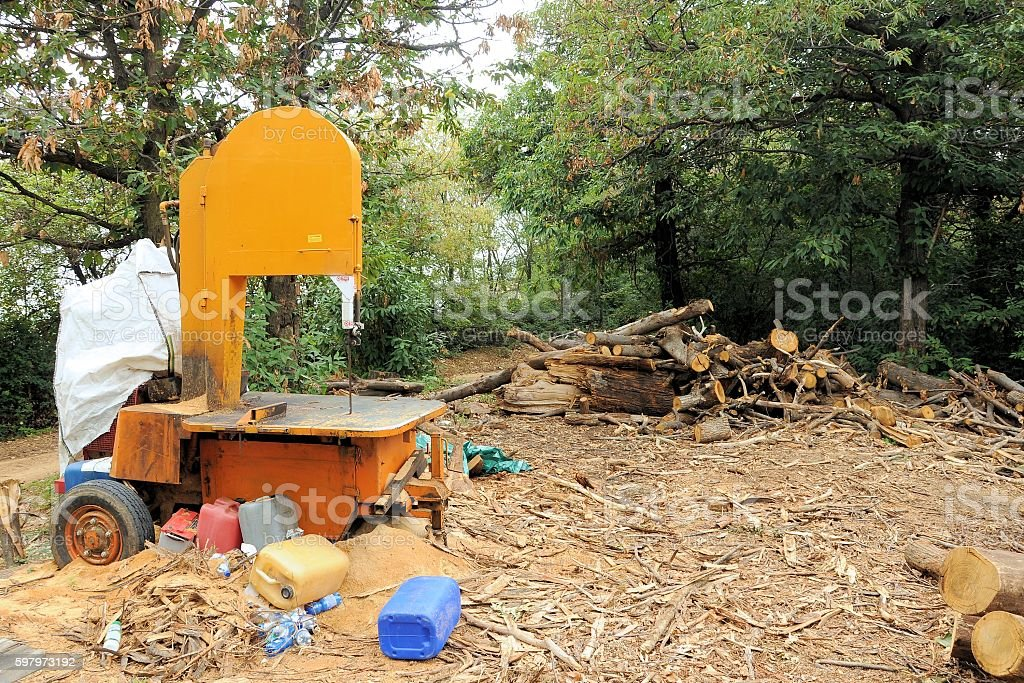 Circular saw for wood logs in the forest stock photo